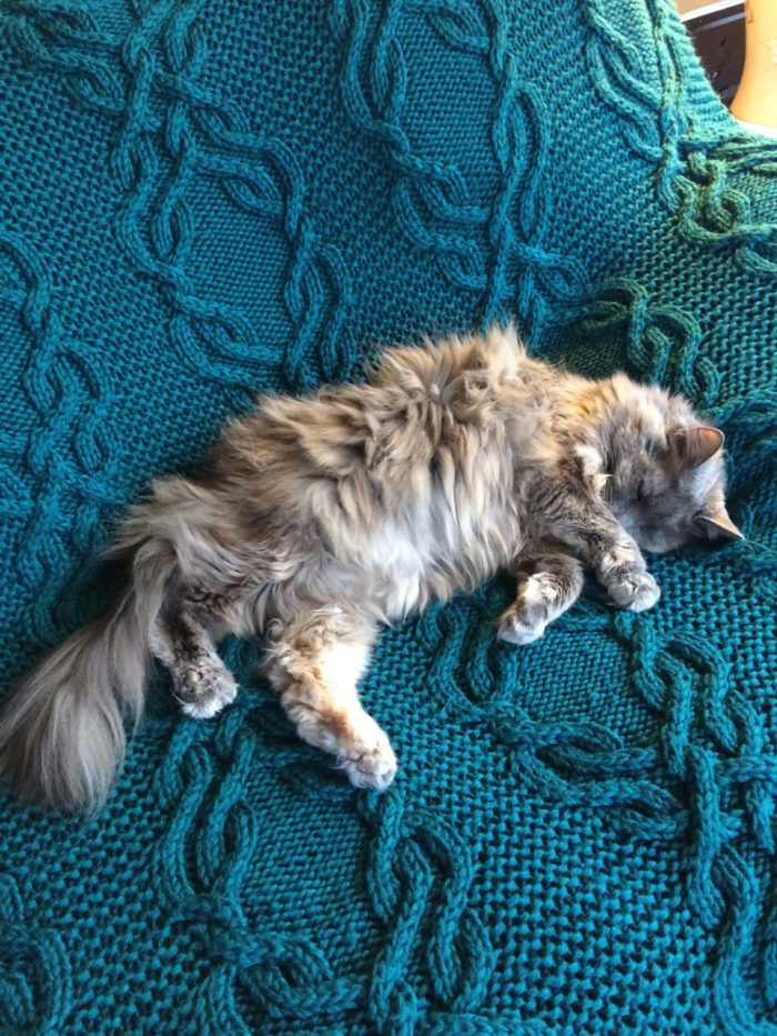Free Knitting Pattern for Cable Lap Blanket