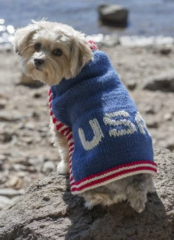 Free knitting pattern for Team USA Dog Sweater