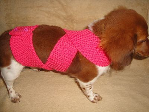 Free Knitting Pattern for Dog Anxiety Wrap