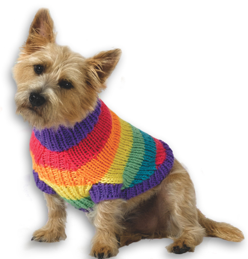 Free Knitting Pattern for Rainbow Dog Sweater