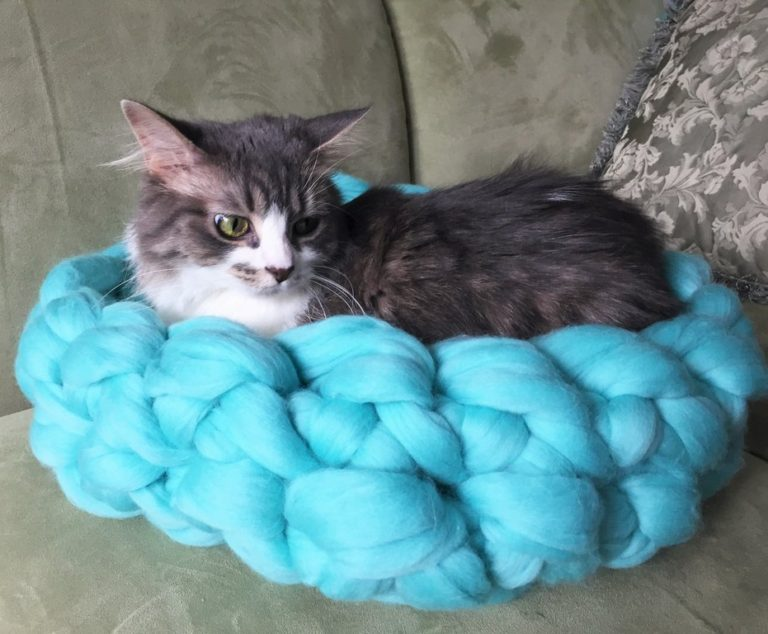 Free Knitting Pattern for Arm Knit Cat Bed