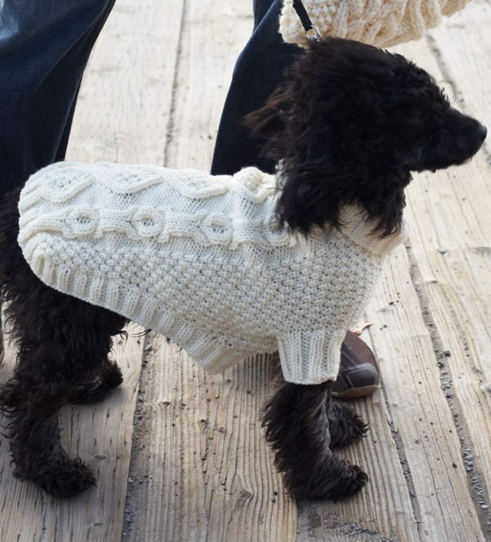 Free Knitting Pattern for Biscuits & Bones Dog Coat