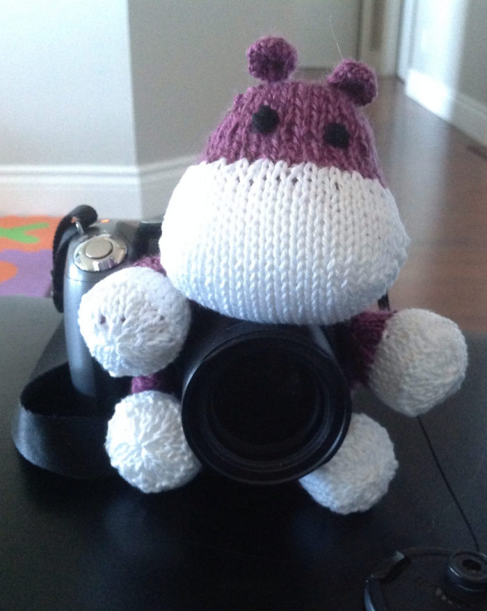 Free Knitting Pattern for Camera Puppet