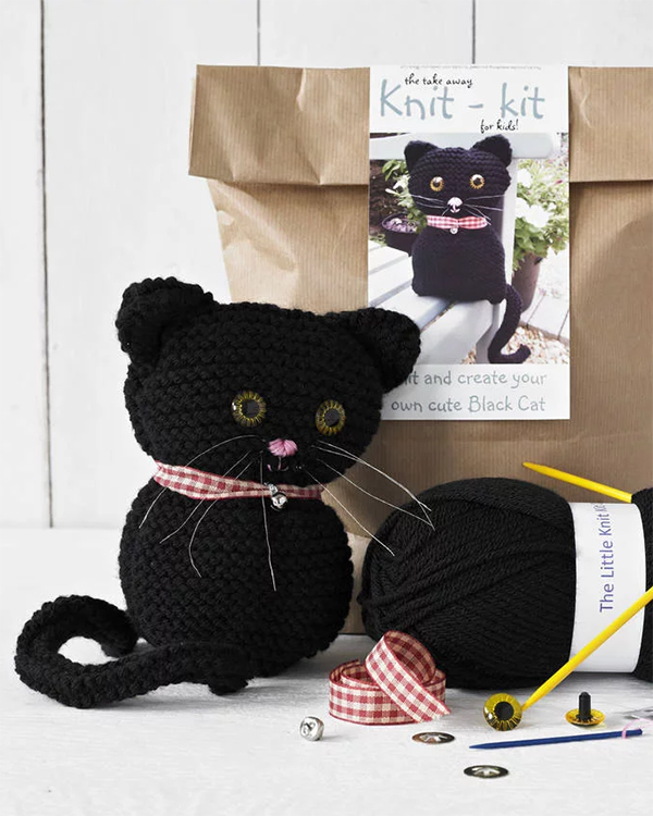 Cat Beginners Knitting Kit