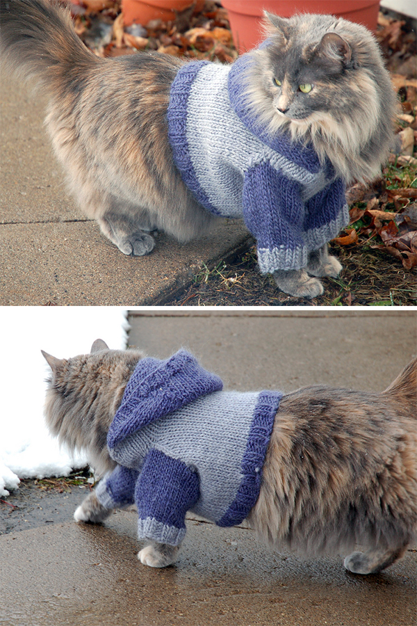 Free Knitting Pattern for Cat Hoodie