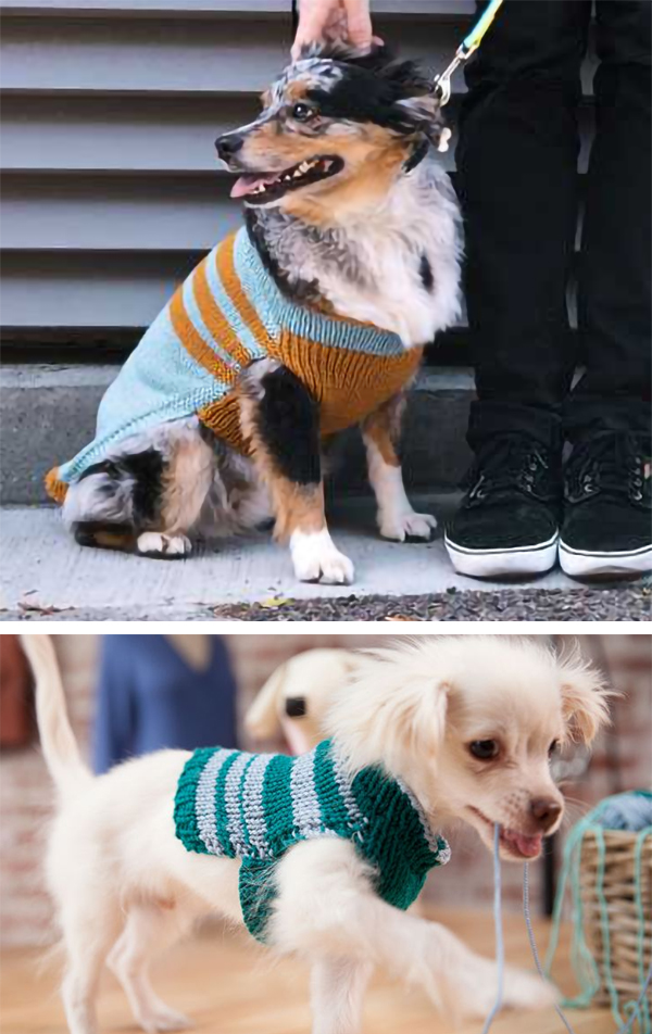 Free Pattern and Class to Knit Custom-Fit Dog Sweater With Free Trial at Creativebug