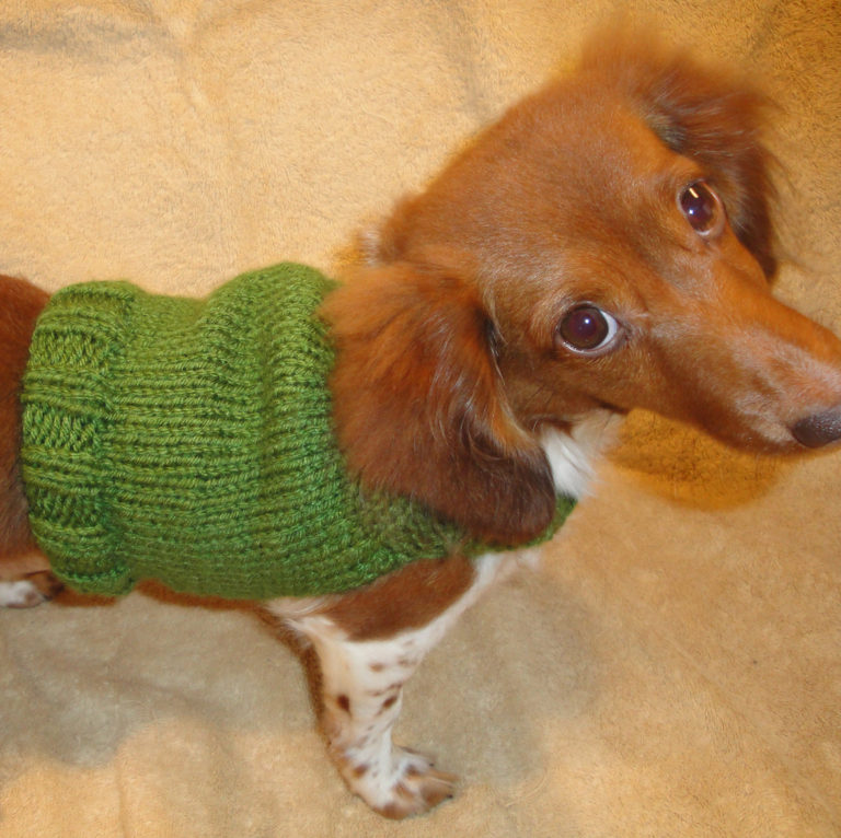 Free Knitting Pattern for Dog Anxiety Sweater