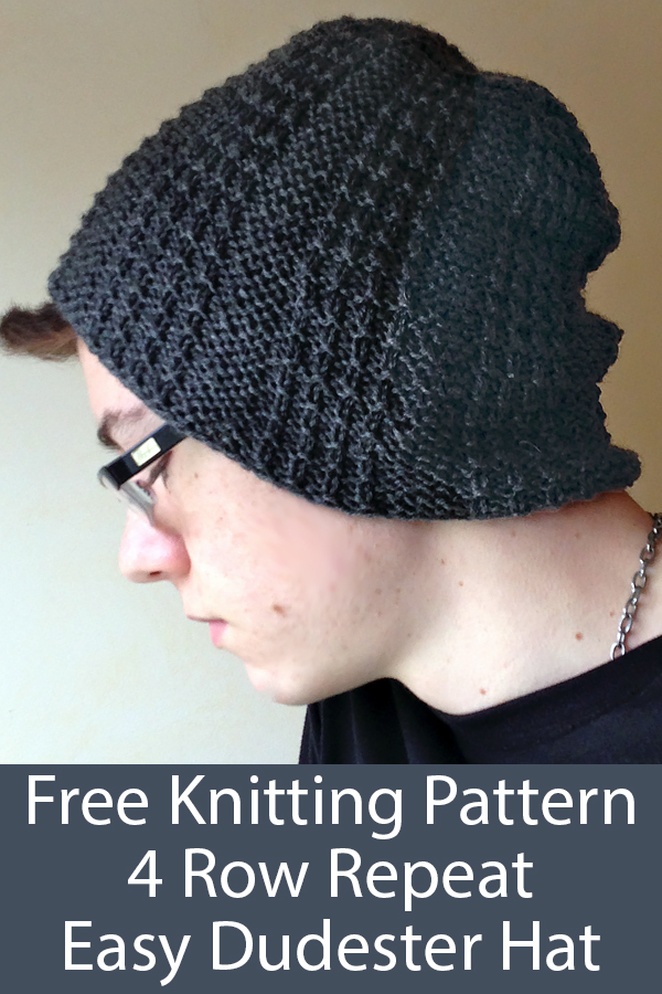 Free Knitting Pattern for Easy 4 Row Repeat Dudester Hat