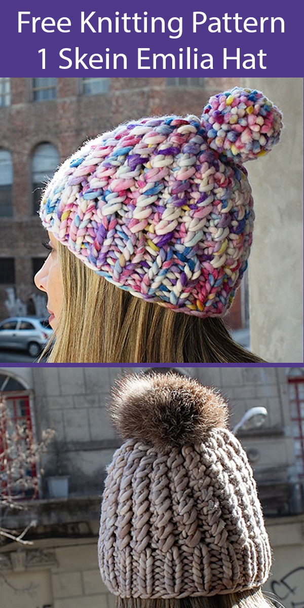 Free Knitting Pattern for Emilia Hat One Skein Hat