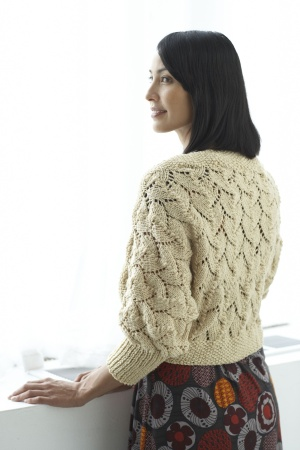 Golden Honey Shrug Free Knitting Pattern | Knitting Patterns for Shrugs and Boleros, many free patterns at http://intheloopknitting.com/free-shrug-bolero-knitting-patterns/