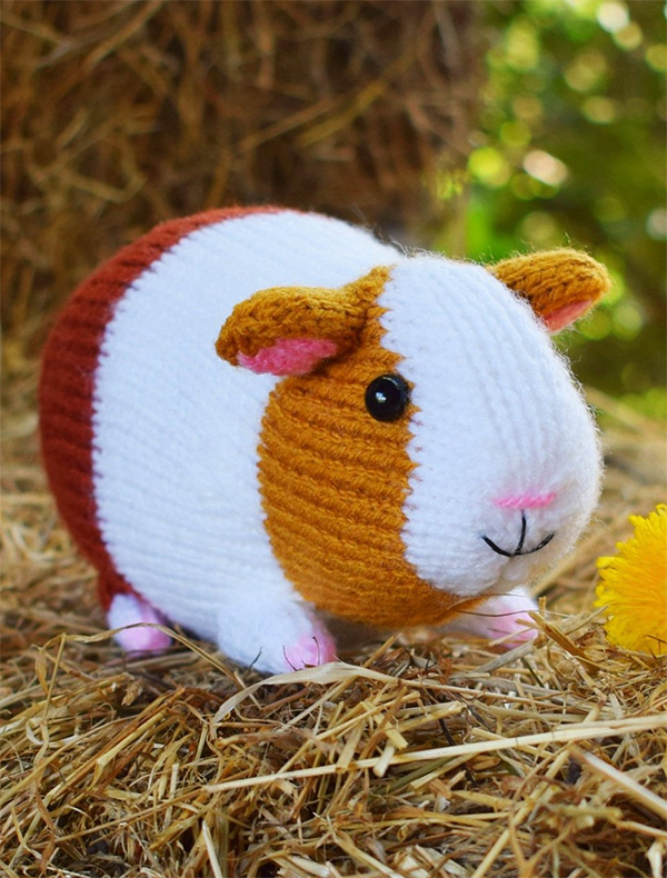 Knitting Pattern for Guinea Pig