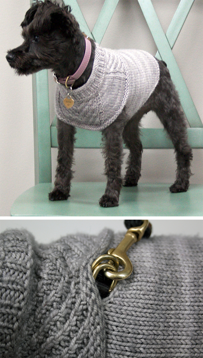 6d1a67085346c6 Free knitting pattern for Harness-friendly dog sweater