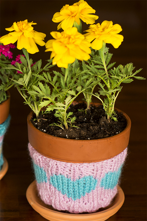 Free Knitting Pattern for Heart Flower Pot Cozy