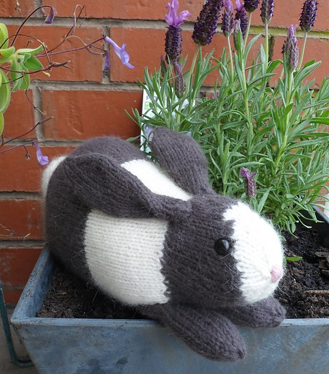 Free knitting pattern for Henry's rabbit plush toy softie