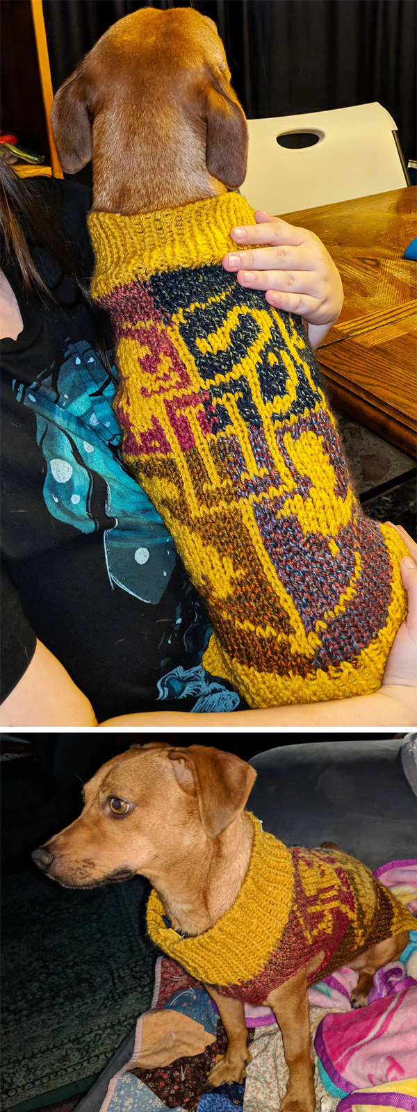 Free Knitting Pattern for Hogwarts House Pup Dog Sweater