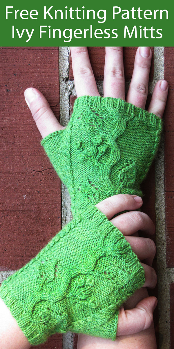 Free Knitting Pattern for Ivy Fingerless Mitts