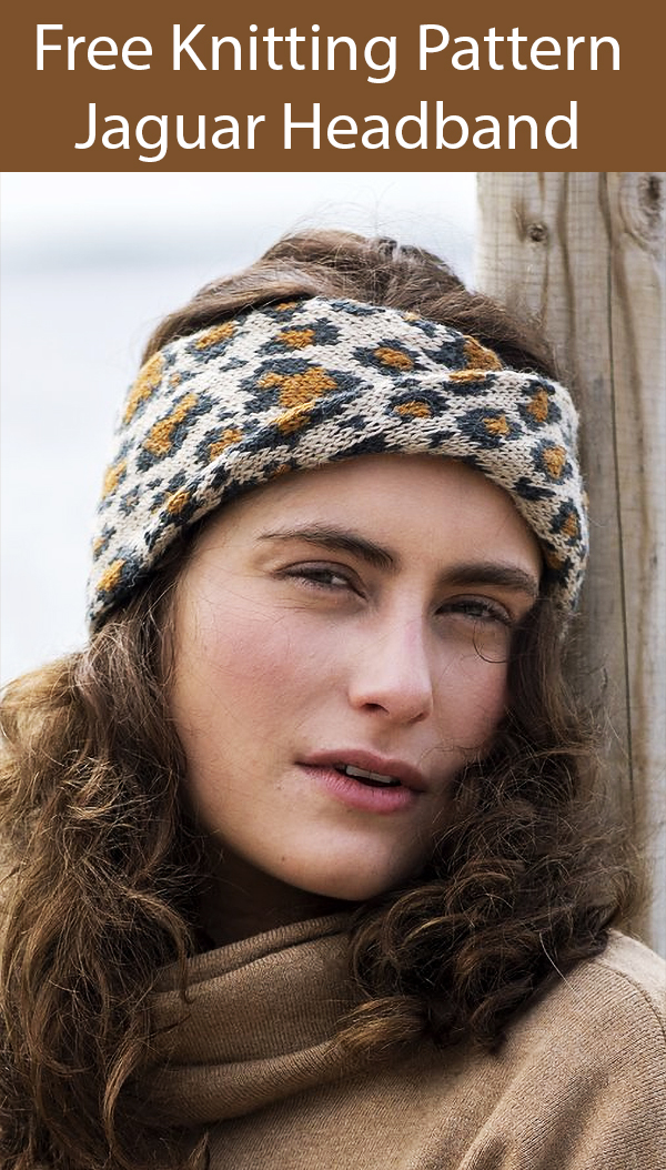 Free Knitting Pattern for Jaguar Headband. Kit is also available.