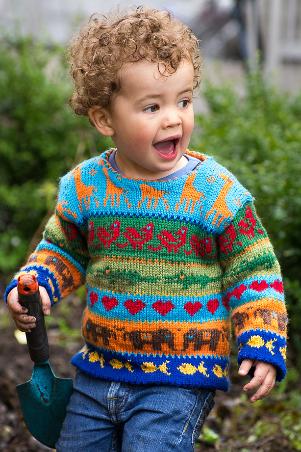 Knitting Pattern for Jungle Sweater