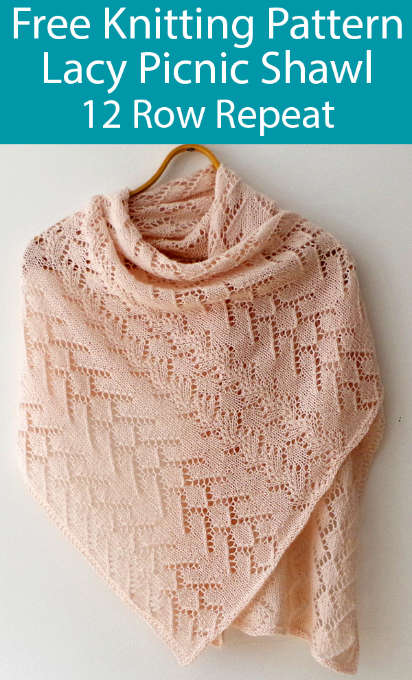 Free Knitting Pattern for Lacy Picnic Shawl