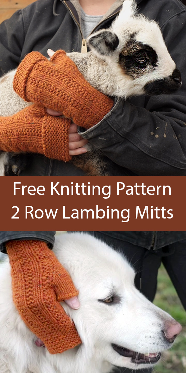 Free Knitting Pattern for Lambing Mitts
