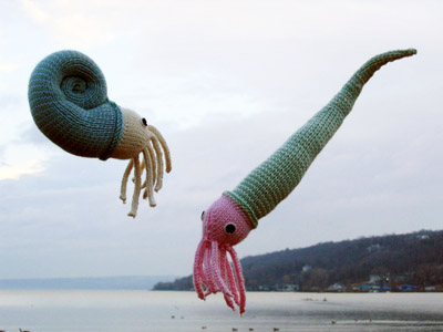 Free knitting patterns for Nautiloids and more sea creature knitting patterns