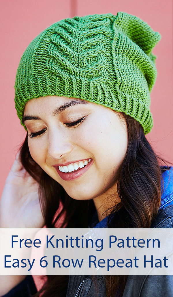 Free Knitting Pattern for Easy 6 Row Repeat Road to Success Chic Hat