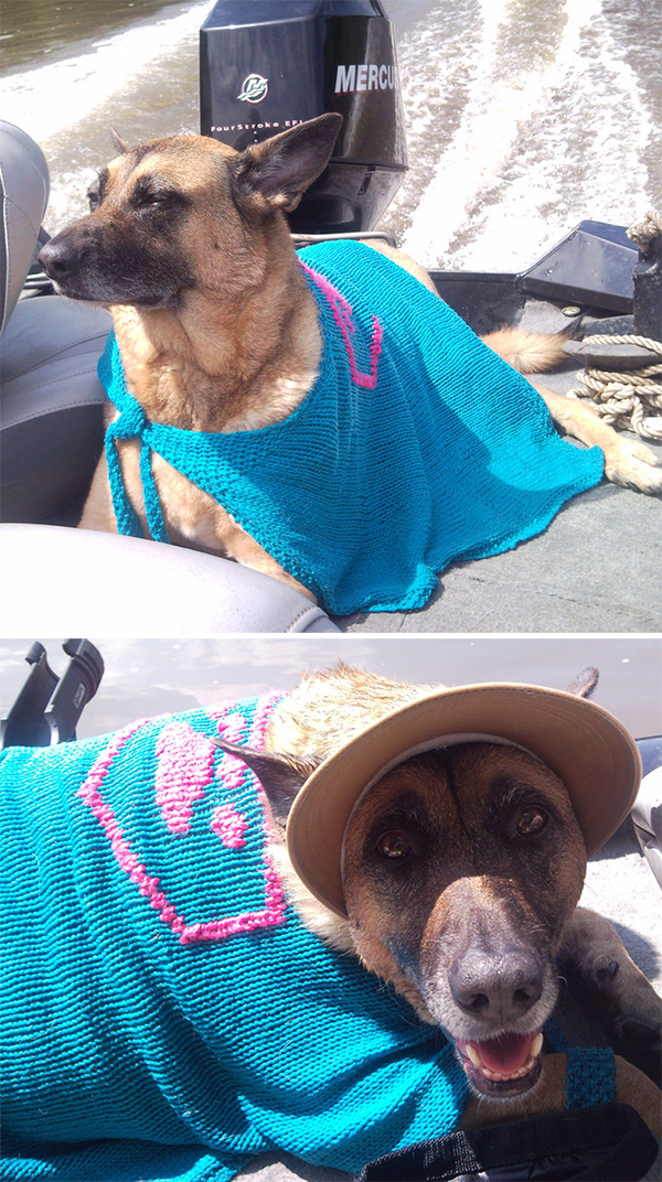 Free Knitting Pattern for SuperDog Cooling Cape