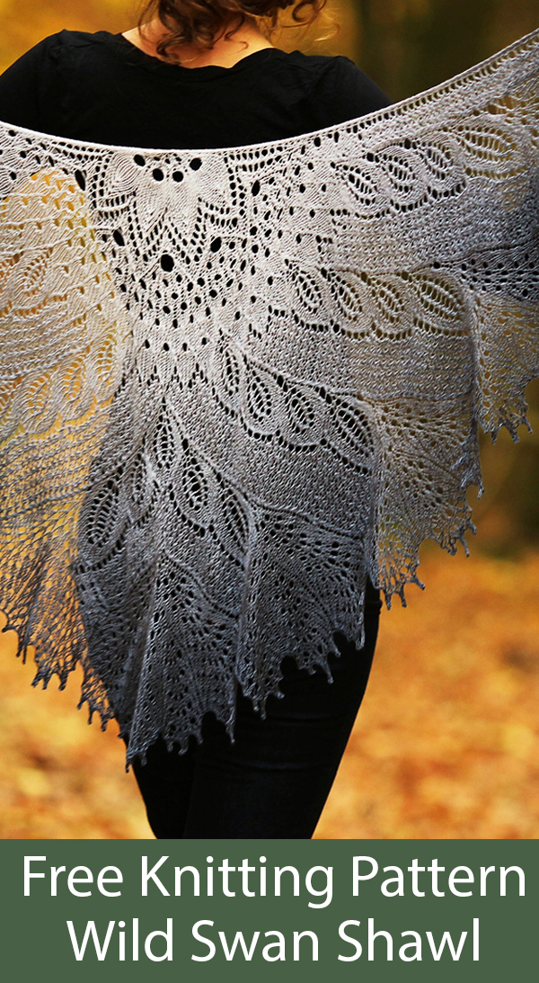 Free Knitting Pattern for Wild Swan Shawl