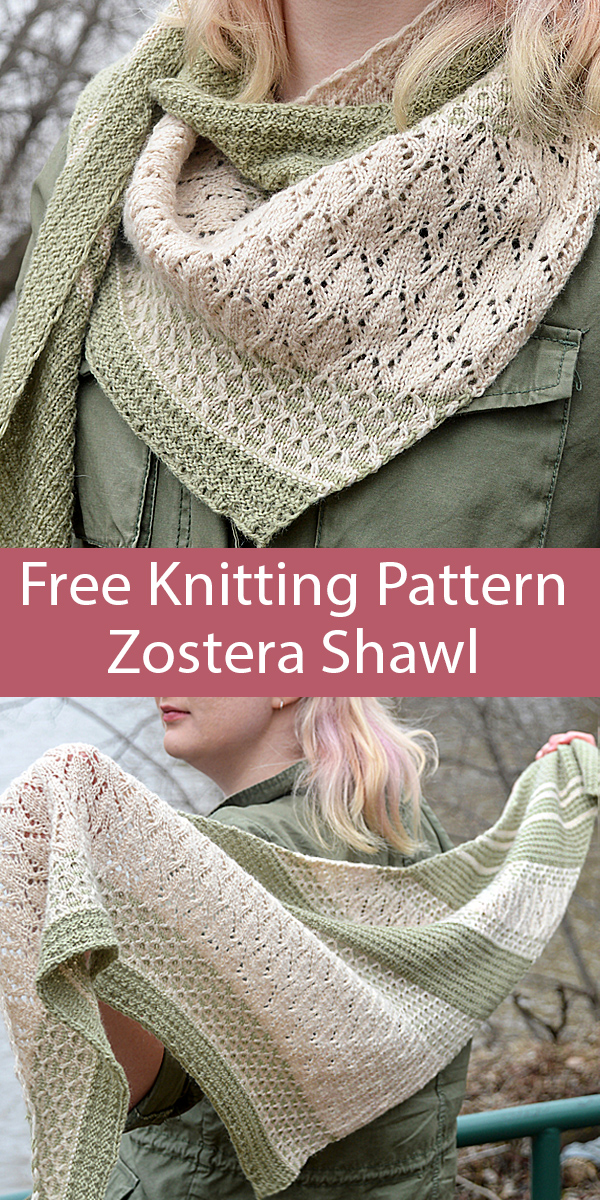 Free Knitting Pattern for Zostera Shawl