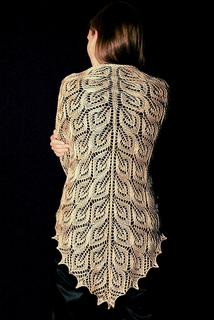 Tree of Light Shawl Free Knitting Pattern | Free Shawl and Wrap Knitting Patterns at www.terrymatz.biz/intheloop